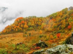 autumn-mountine-Favim.com-2076584